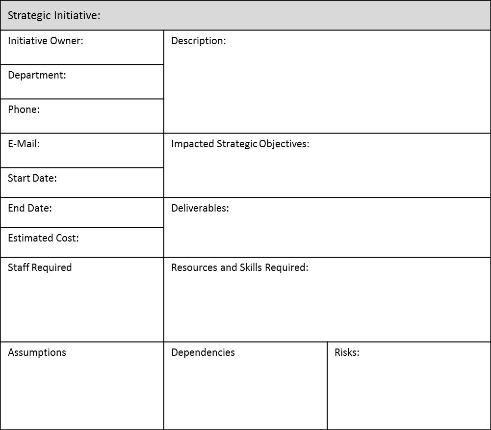 Strategic Initiatives - Description