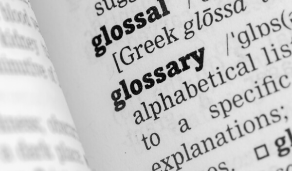 Glossary of Strategic terms from Intrafocus